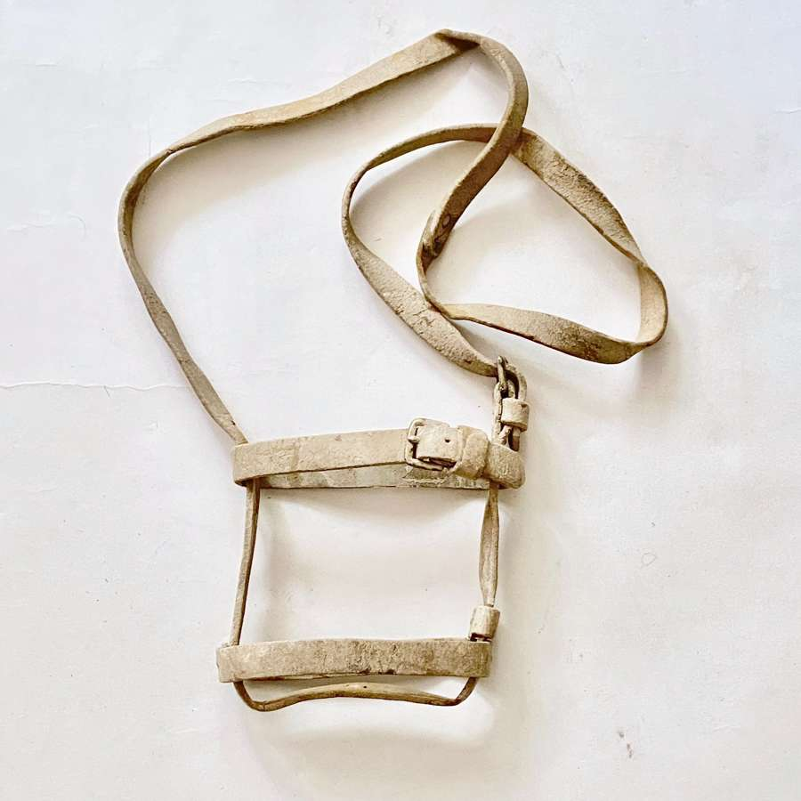 Zulu War / Boer War Slade Wallace Oliver Water Bottle Harness.